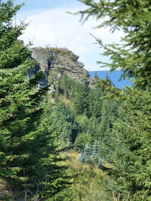 Průhled k Obřím skalám z příjezdové cyklostezky 6208
