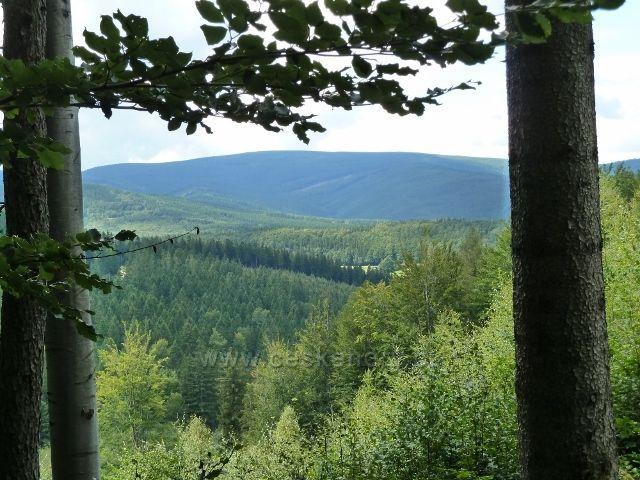 Pohled z cyklostezky 6208 k Rychlebským horám