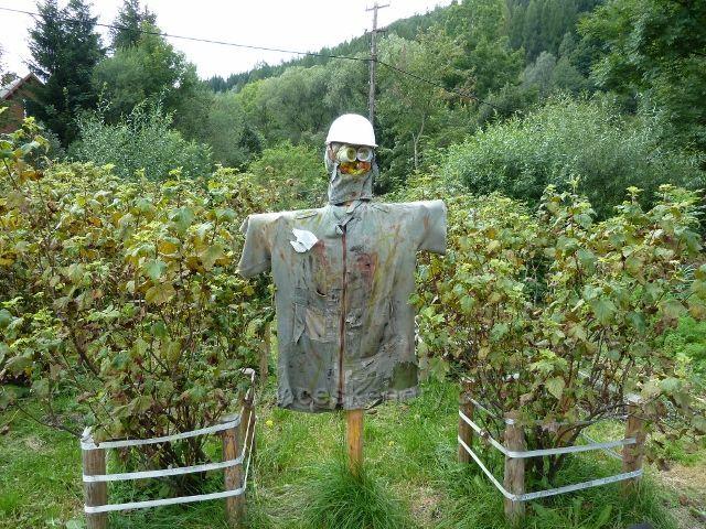 """""""Hlídač"""" úrody na zahrádce v Lipové"""