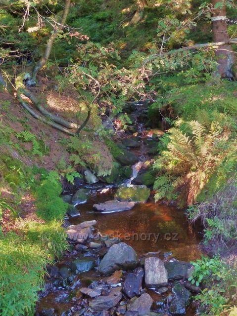 Čertovodolský potok u lovecké chaty pod Korunou