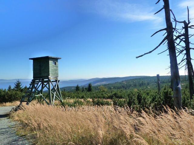 Posed u Bunkrovky pod vrcholem Koruny
