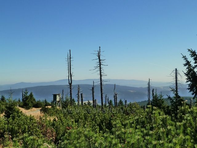 Pohled z vrcholu Koruny - 1099 m.n.m.