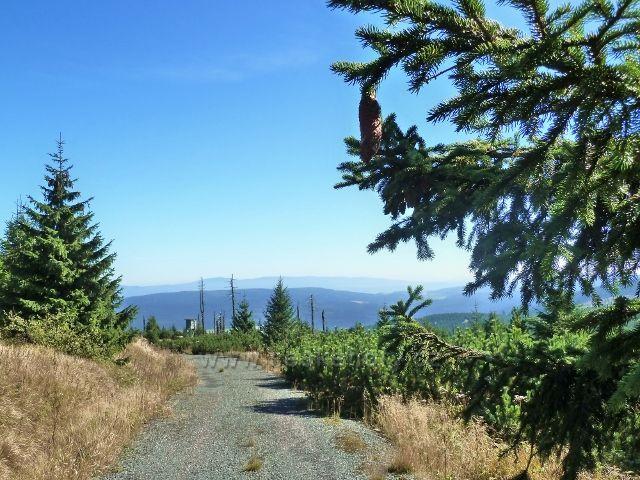 Pohled z vrcholu Koruny-v těchto místech ještě před pár lety stávalo odpočívadlo