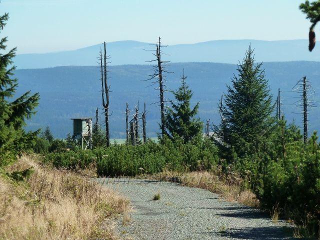 Pohled z Bunkrovky pod vrcholem Koruny