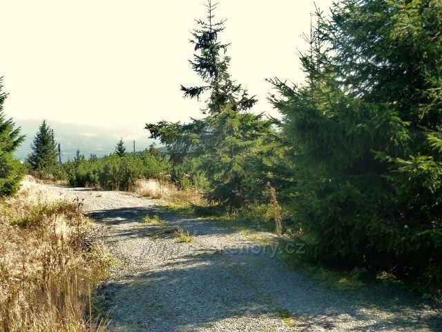 Bunkrovka na vrcholu Koruny kde stávalo odpočívadlo