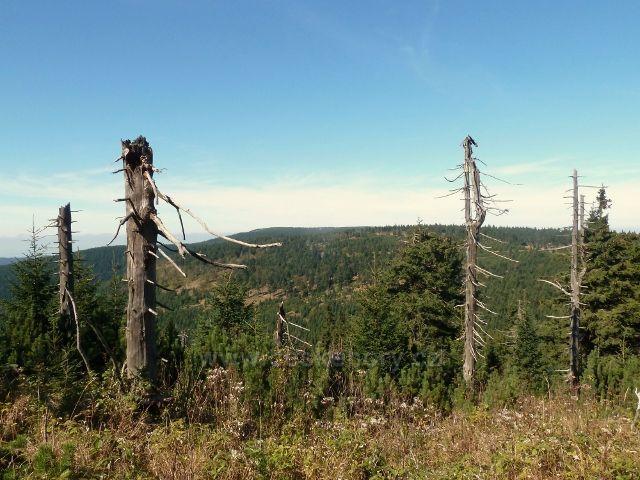 Pohled z úbočí Koruny na Jelenku