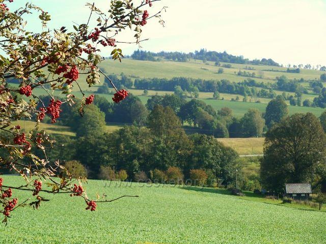 Pastviny - pohled na stráně nad Vlčkovicemi
