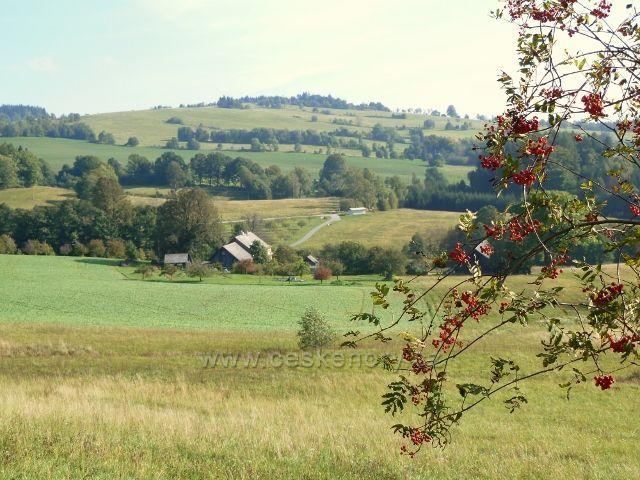 Pastviny - pohled k Vlčkovicím