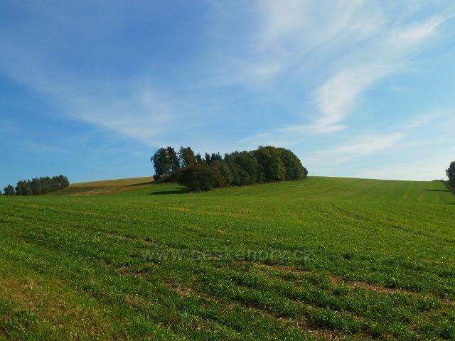 """Pastviny - vrch """" Na Vrších"""" 620 m.n.m."""