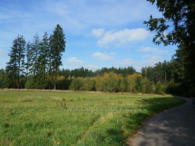 Pastviny - silnička od Vejdovy lípy do Klášterce nad Orlicí