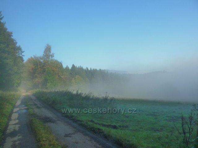Horní Lipová -vrstevnicová cesta nad Lesní bar za ranní mlhy