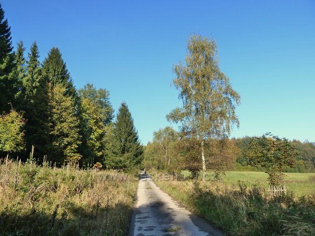 Horní Lipová - vrstevnicová cesta nad Lesní bar