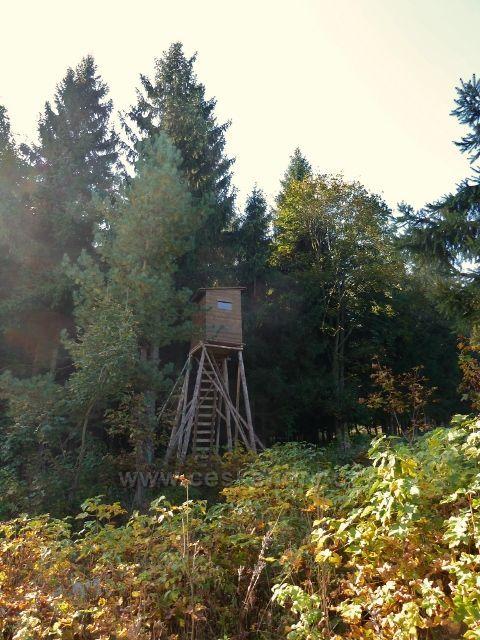 Horní Lipová - posed u vrstevnicové cesty nad Lesní bar