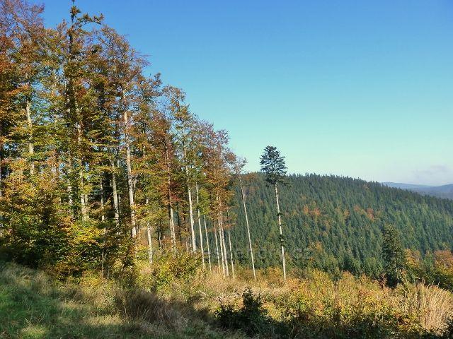 Horní Lipová - pohled z poslední části vrstevnicové cesty nad Lesní bar