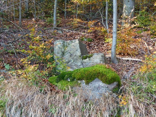 Horní Lipová - poslední část vrstevnicové cesty nad lesní bar prochází kamenitým terénem