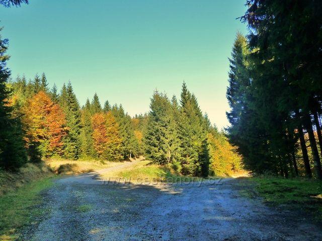 Horní Lipová -vrstevnicová cesta končí v zákrutě cyklostezky 6044 nad Lesním barem
