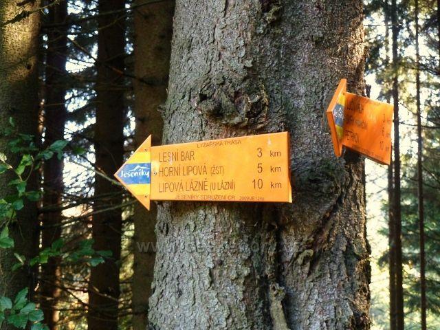 Horní Lipová - rozcestník v zákrutě cyklostezky 6044 nad Lesním barem
