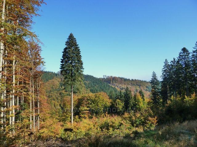 Horní Lipová - pohled c cyklostezky 6044 na protilehlý hřeben mezi Lučním vrchem a Jesenným