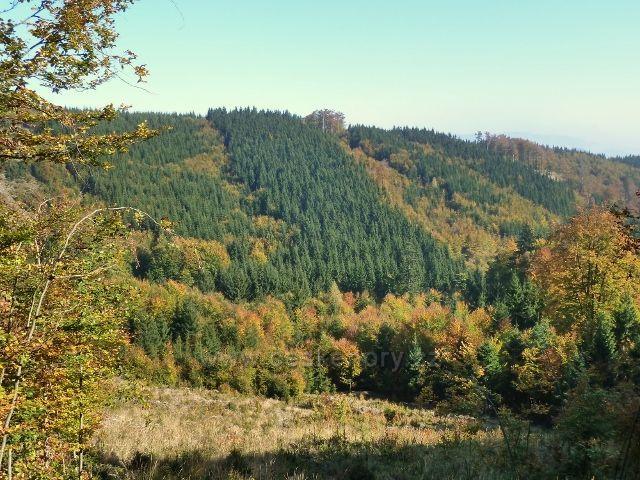 Horní Lipová -pohled z cyklostezky 6044 na protilehlý hřeben vrchu Jesenný