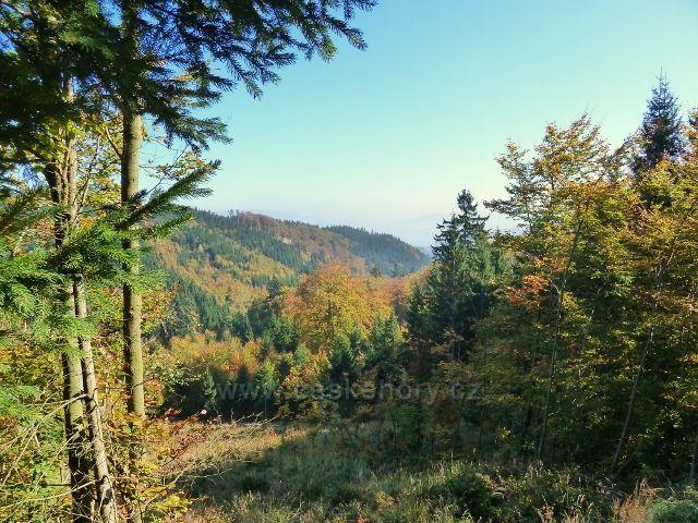 Horní Lipová - pohled z cyklostezky 6044 do horní části údolí Vápenného potoka