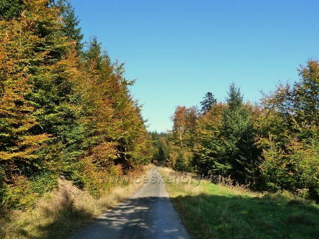 Horní Lipová - cyklostezka 6044 před horním lesním barem