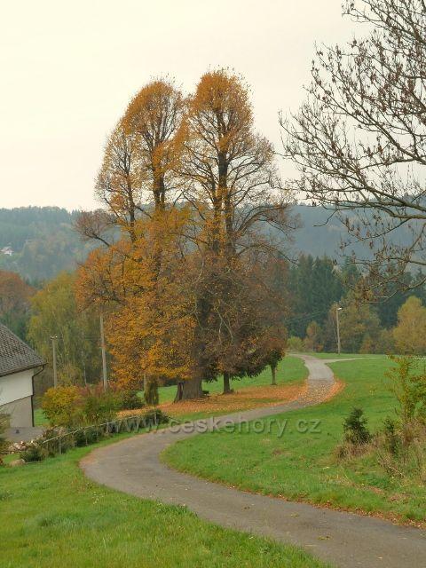 Pastviny - lípy u chalupy nad vlekem