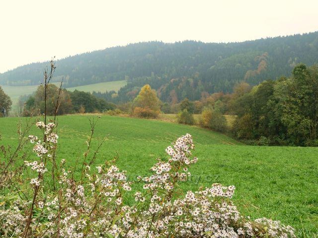 Pastviny - pohled z Vrší na Studenecký hřbet