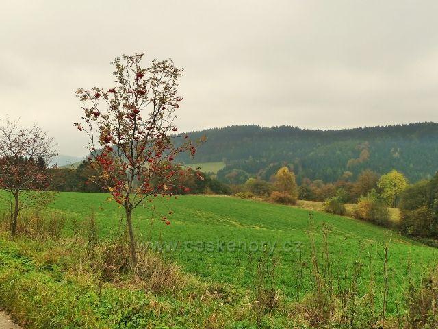 Pastviny - pohled z Vrší ke Studeneckému hřbetu