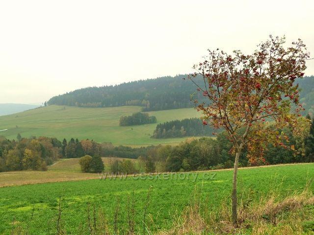 Pastviny- pohled z Vrší na Studenecký Vrch