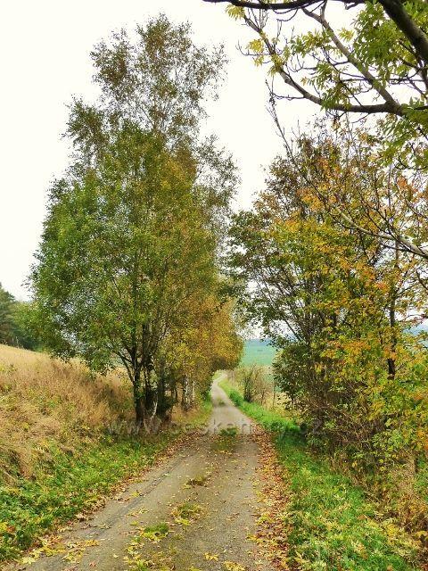 """Pastviny - okružní cyklostezka""""Na Vrších"""""""
