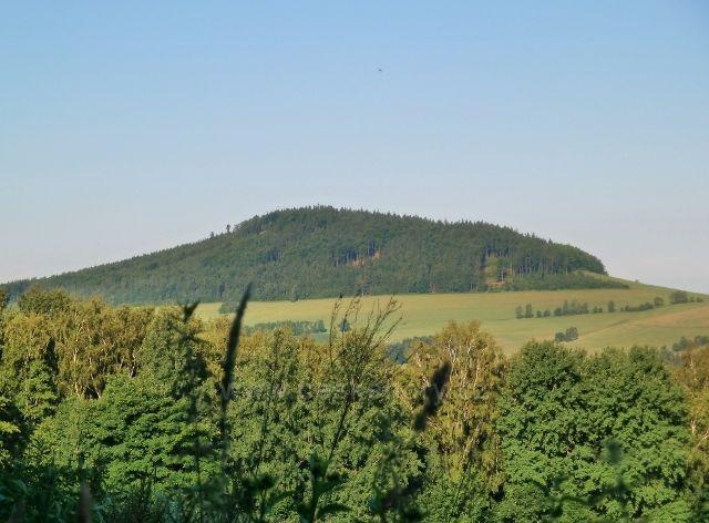 Pohled na Studenecký vrch od bývalých mladkovských lesních školek