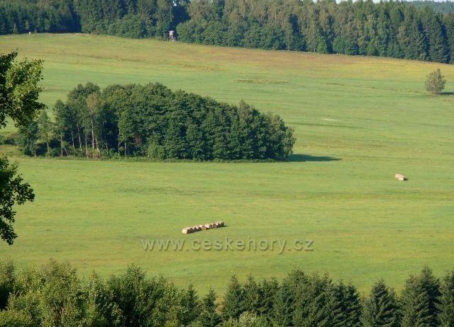 Pastvina pod Suchým vrchem nad Mladkovem