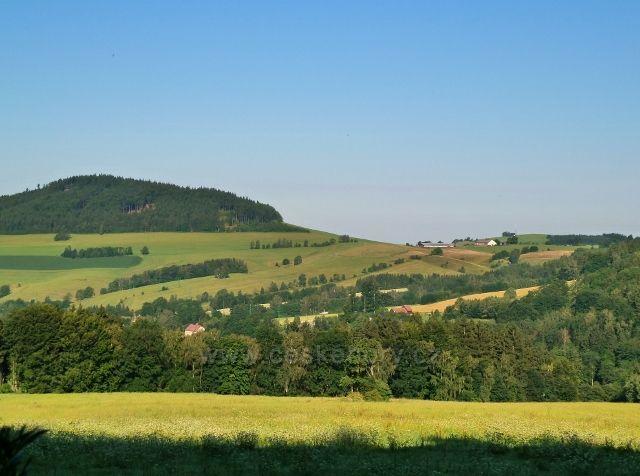 Pohled od bývalých mladkovských lesních školek na Studenecký vrch a vlčkovický kravín- v popředí část Celného