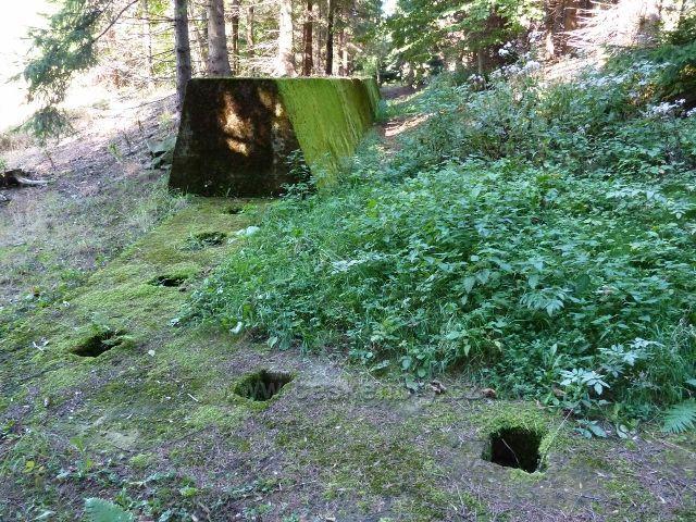 Adam -betonový val v lese pod bunkrem K-S36