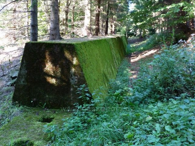 Adam - betonový val v lese pod bunkrem K-S36