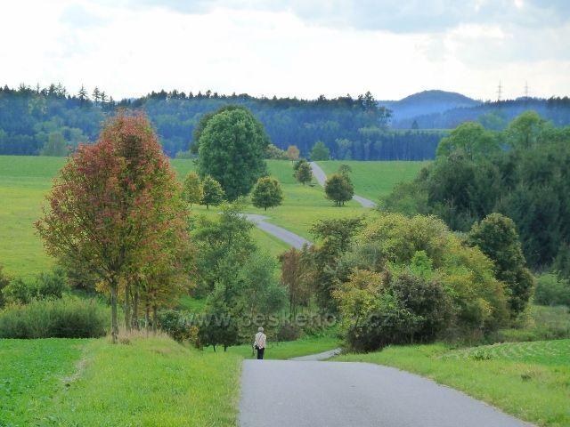 Líšnice - místní silnička z klášterecké silnice do obce, na obzoru vykukuje vrch Žampach