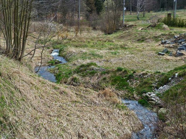 Horní Orlice - tento potok pod hotelem Alfa je Tichá Orlice