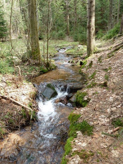 Horní Orlice - část horního toku Tiché Orlice pod Jeřábkem