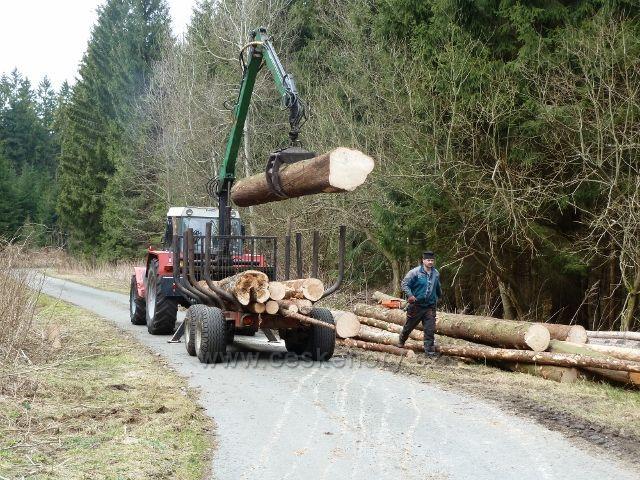Horní Orlice - odvoz dřeva z nahodilé těžby pod Jeřábkem