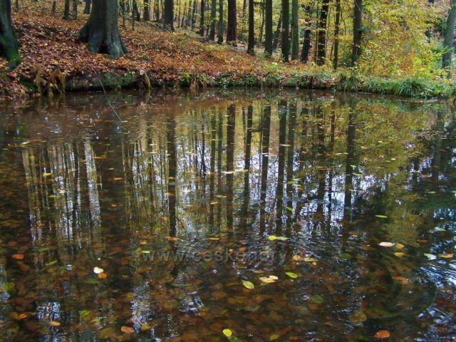 """podzimní """"siesta"""" k zamyšlení......"""