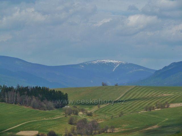 Pohled na zasněžený Kralický Sněžník z úpatí Mariánského vrchu