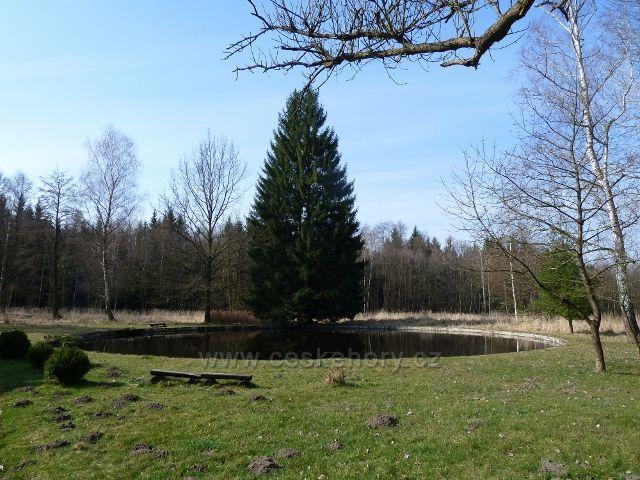 Sklenářka - park s jezírkem před vilou