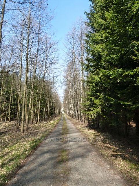 Sklenářka - odbočka z hlavní lesní cesty ke Sklenářce
