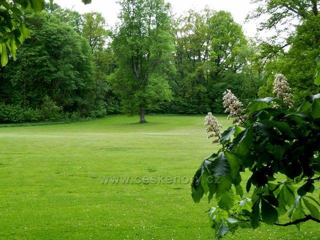 Žamberk - zámecký park