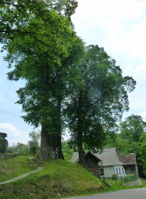 Bohousová - areál zvoničky nad silnicí do České Rybné