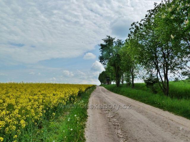 Bohousová - cyklostezka do České Rybné