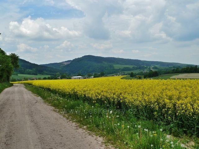 Bohousová - pohled z cyklostezky do České Rybné na Litický lom a hřeben Chlumu