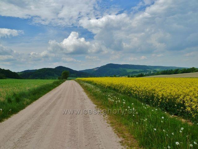 Bohousová - pohled z cyklostezky do České Rybné na Kletnou/vlevo/ a Chlum s Litickým lomem/vpravo/