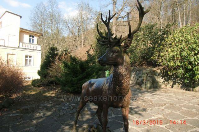 jelen v lázeňských lesích