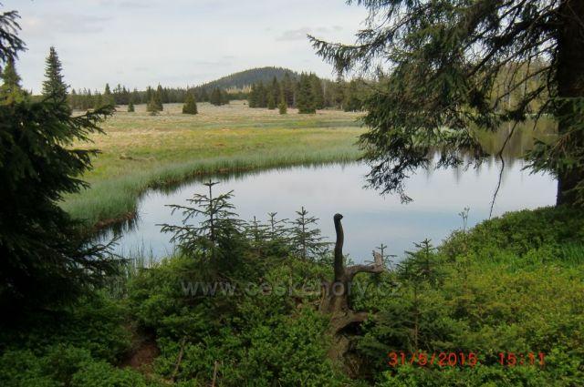 Mrtvý rybník pod Špičákem